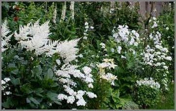 Design elements of english garden style english garden with white flowers mightylinksfo