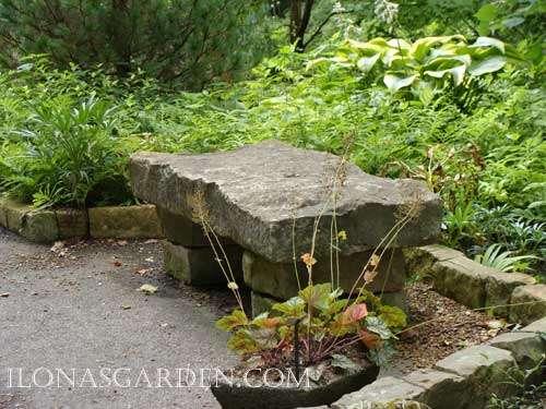 The Serenity Garden