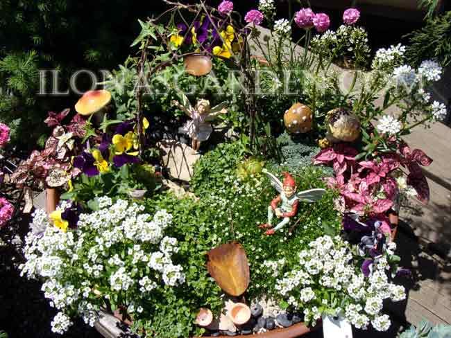 Ilonau0027s Garden