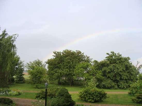 2010 rainbow