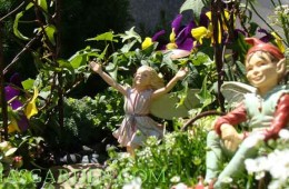 Make A Delightful And Creative Fairy Garden