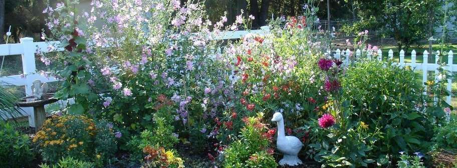 english garden flowers. Country Garden Plants For An English Style Flowers
