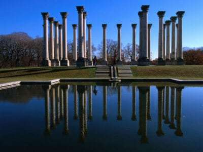 Capitol Columns Reflected in a Pool in the Gardens of US National Arboretum, Washington Dc, USA