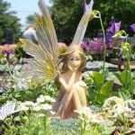 fairy 101