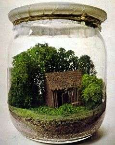 source moma via donni - Fairy Garden Terrarium