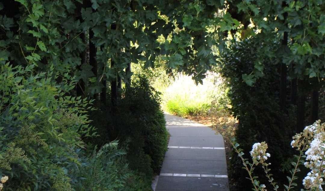 Garden Design – An Elemental Overlook