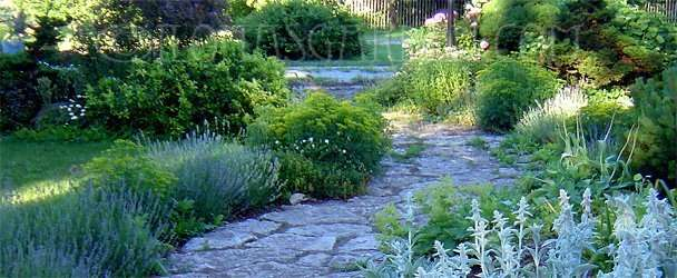 Why Homeowners Should Be Familiar with Garden Design