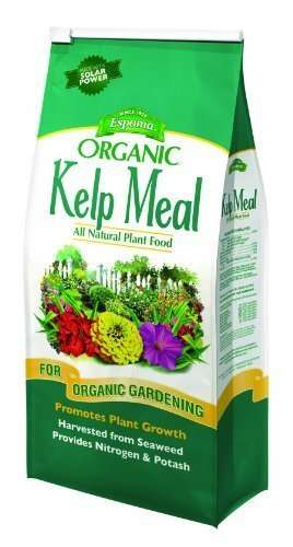 Espoma Organic Traditions Kelp Meal 1-0-2 - 4 lb Bag KM4