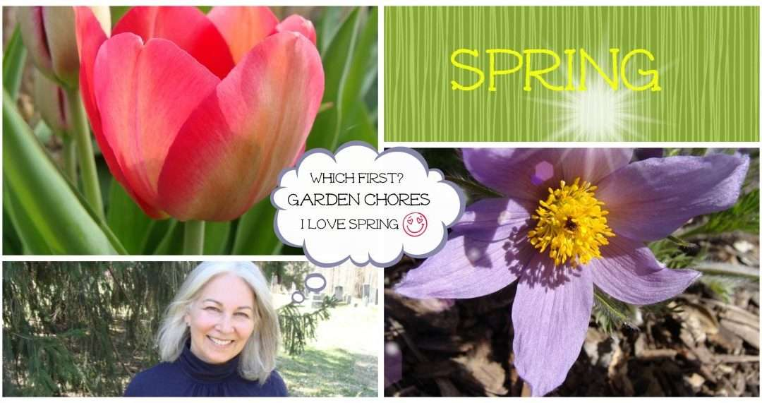 Spring In Full Swing, 14 Things You Should Do
