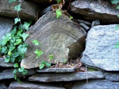look for a nook in a rock