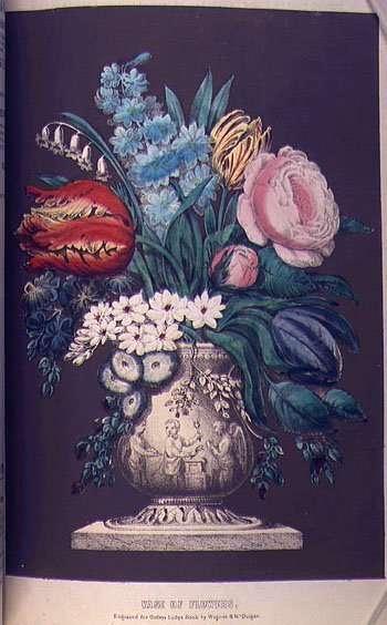 Godey's Lady's Book Floral Illustration