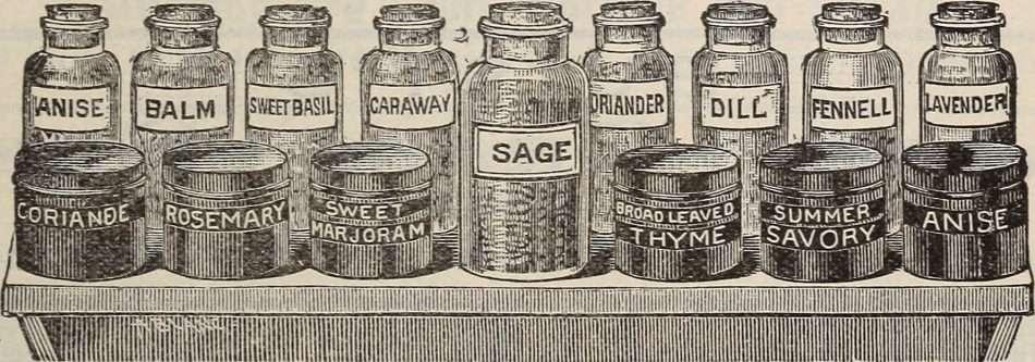 shelf o' herbs