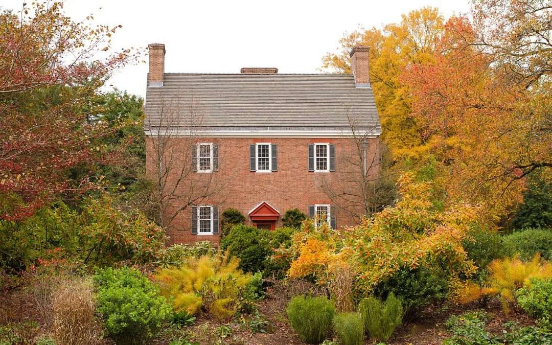 Bright Ideas For Fall Foliage