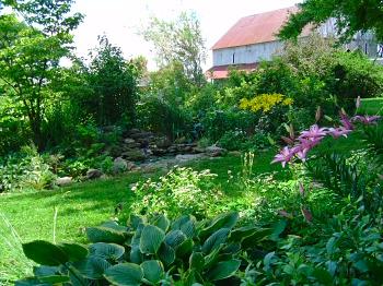 Ilona's side garden